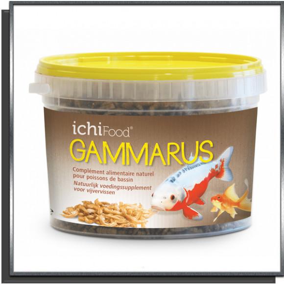 Ichi Food Gammares 1L