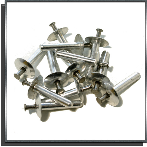 Lot de 100 rivets inox à frapper pour rail Hung